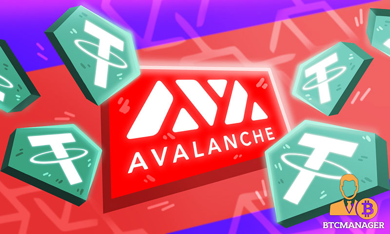 introduction-Avalanche